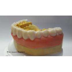 Zahnverblendung Pro-Line Expert X4 Unterkiefer gelblich weißer Farbton